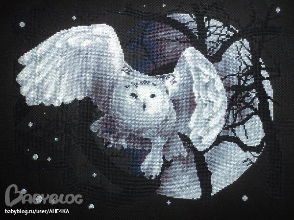 Вот такая белая сова у меня получилась.  Вышивала по набору от PANNA.